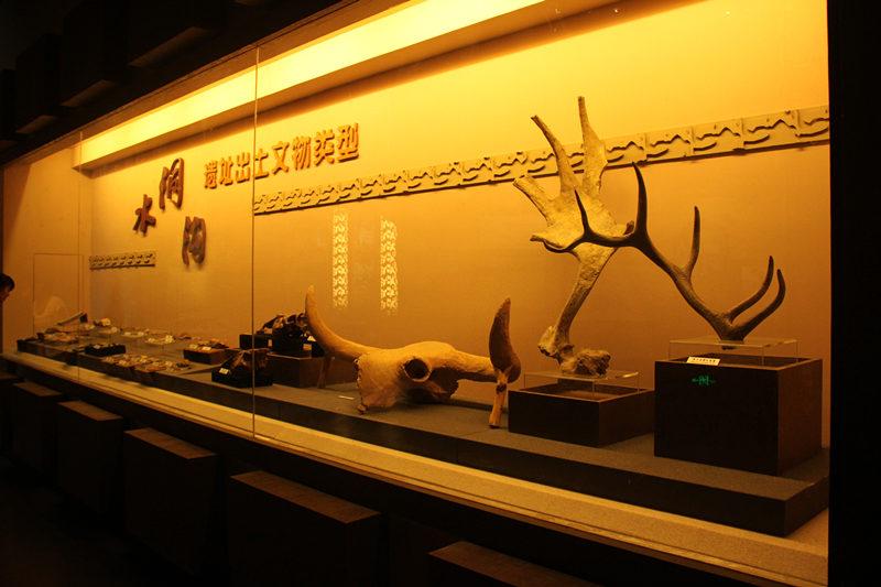 水洞沟遗址出土文物类型展
