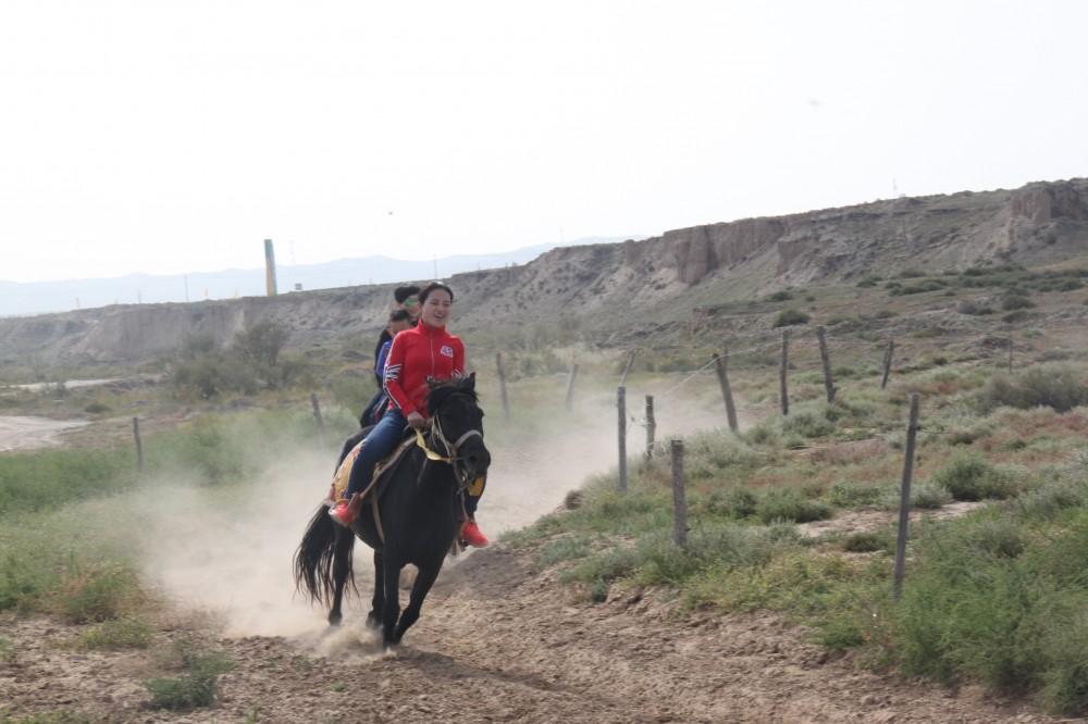 银川旅游景点水洞沟骑马