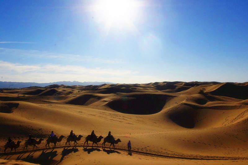 沙坡头沙漠