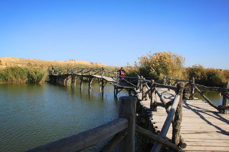宁夏旅游景区水洞沟鸳鸯湖水岸美景