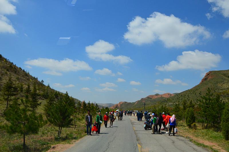 西夏王陵,贺兰山岩画,黄沙古渡,火石寨国家地质(森林)公园,须弥山石窟