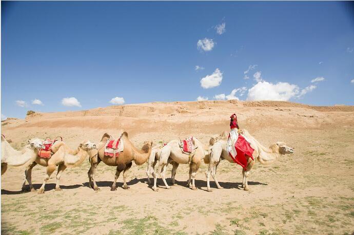 宁夏银川旅游水洞沟骑骆驼