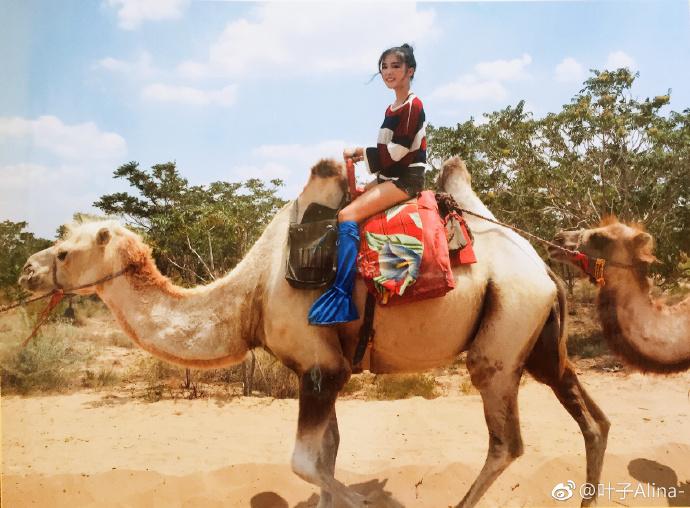 宁夏旅游水洞沟旅游区骑骆驼