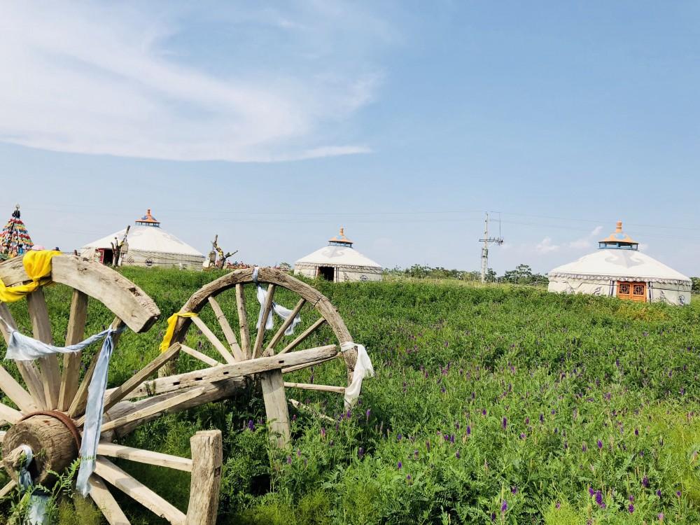 野性草原蒙古人家一景