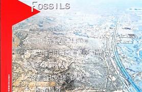 化石:水洞沟,那方神奇的热土